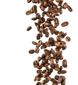 Falling coffee beans — Stock Photo