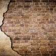 Stock Photo: Old brick wall partially damaged