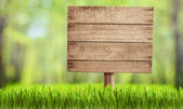 Wooden sign in summer forest, park or garden — Stock Photo