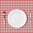 Stock Photo: Knife, white plate and fork on red picnic table cloth