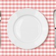 Empty dinner plate top view on pink picnic table cloth — Stock Photo #33314963