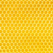 Honey in honeycomb background — Stock fotografie