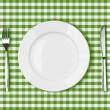 Knife, white plate and fork on green picnic tablecloth — Stock Photo #39101989