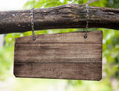 Blank wooden sign board hanging on branch — Stock Photo
