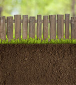 Garden soil with wooden fence — Stock Photo