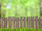 Green background with wooden fence — Stock Photo