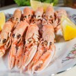 Scampi — Stock Photo