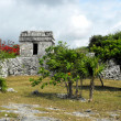 Tulum MayRuins — Stock Photo #24560371