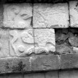 Chichen Itza Mayan Glyphs Eagle — Stock Photo
