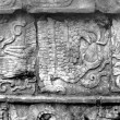 Mayan glyphs of Eagle at Chichen Itza — Photo