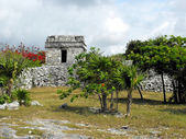 Tulum Mayan Ruins — Stock Photo