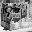 Chac Mask Uxmal — Stock Photo #24882763