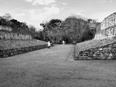 Ballcourt Ek Balam Mayan Ruins — Stock Photo