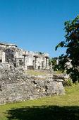 Pyramides mayas — Photo
