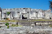 Mayan pyramids — Stock Photo
