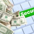 Secure Online Purchases  — Stock Photo