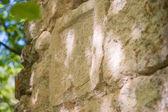 Kamenné pozadí s antické řecké nápisy — Stock fotografie