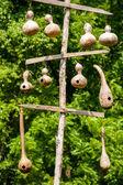 Závěsné tykev ptačí budky — Stock fotografie