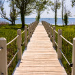 Stock Photo: Walkway to the ocean