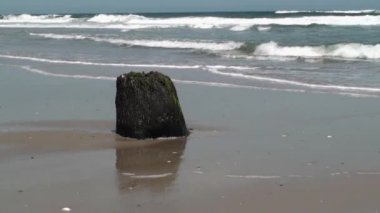 Waves behind a stump — Stockvideo