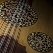 Oud (Lute) — Stock Photo #26912181