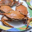 Stock Photo: Boiled crab