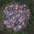 Stock Photo: Grass and stones
