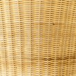 Rattan palm background — Stock Photo