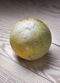 Cantaloupe melon on wooden board — Stock Photo