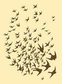 Silhouette of flock birds — Stock Vector