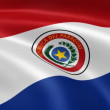 Paraguayan flag in the wind — Stock Video