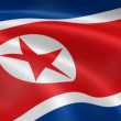 North Korean flag in the wind — Stock Video