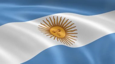 Argentinian flag in the wind — Stock Video