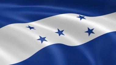 Honduran flag in the wind — Stock Video