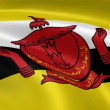 Bruneian flag in the wind — Stock Video