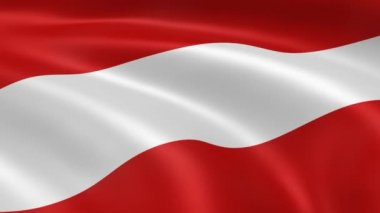 Austrian flag in the wind — Stock Video