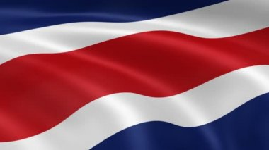 Costa Rican flag in the wind — Stock Video