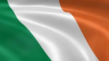 Irish flag in the wind. — Stock Video