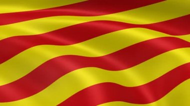 Catalonian flag in the wind. — Stock Video