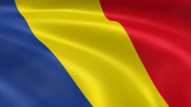 Romanian flag — Stock Video #12655124