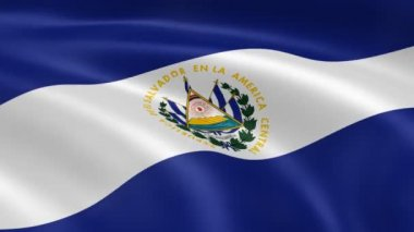 Salvadoran flag in the wind. — Stock Video