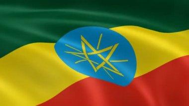 Flaga etiopii na wietrze. — Wideo stockowe