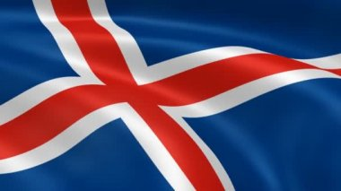 Icelander flag in the wind. — Stock Video