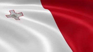 Maltese flag in the wind. — Stock Video
