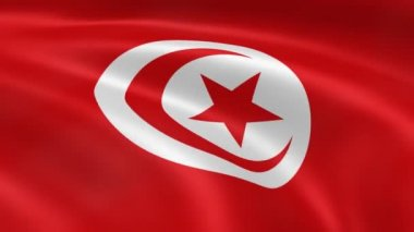Tunisian flag waving in the wind. — Video Stock