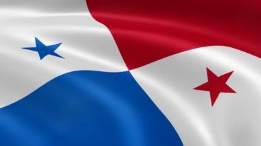Panamanian flag in the wind. — Stock Video