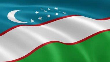Uzbek flag in the wind. — Stock Video