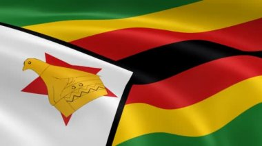 Zimbabwean flag in the wind. — Stock Video