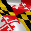 Marylander flag in the wind. - Stock Photo