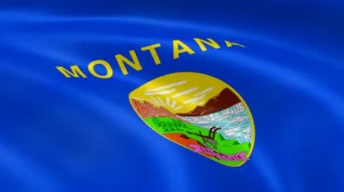 Montanan flag in the wind. — Stock Video